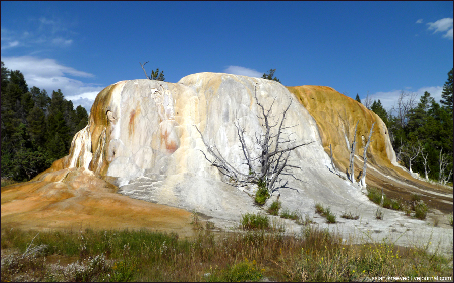 Orange Spring Mound. Yellowstone National Park.